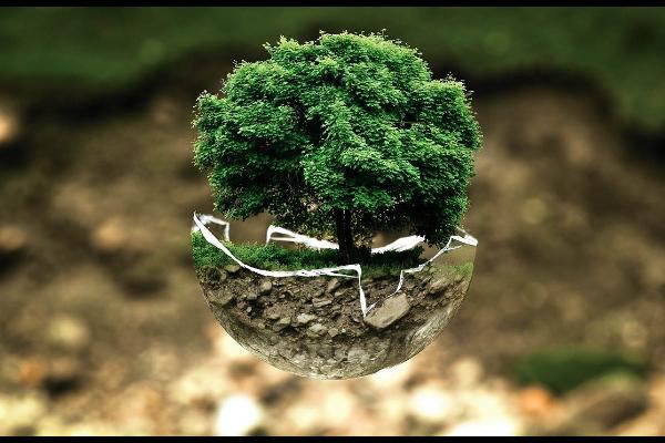 imagen de la noticia Fondo mes de Octubre: Ecología